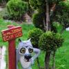 Садовые фигурки недорого купить в украине